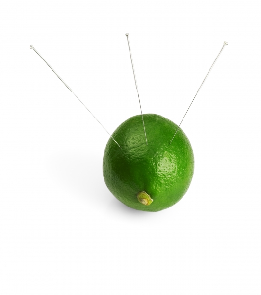 383109-lime-and-needle
